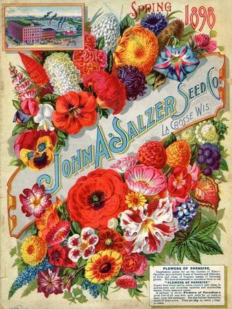https://imgc.allpostersimages.com/img/posters/seed-catalogues-john-a-salzer-seed-co-la-crosse-wisconsin-spring-1898_u-L-Q1BAMZ80.jpg?p=0