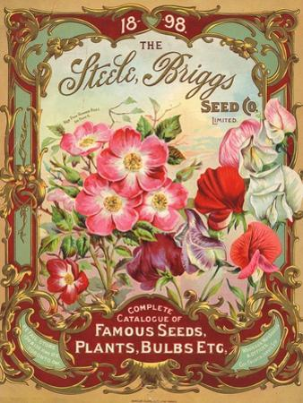 Seed Catalogues: Steele, Briggs Seed Co. Ltd. Complete Catalogue of Famous Seeds, Plants, and Bulbs