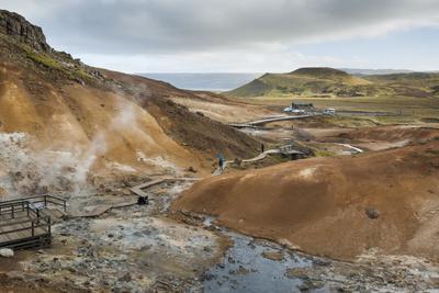 https://imgc.allpostersimages.com/img/posters/seltun-krysuvik-geothermal-area-reykjanes-peninsula-iceland-polar-regions_u-L-PQ8M5N0.jpg?artPerspective=n