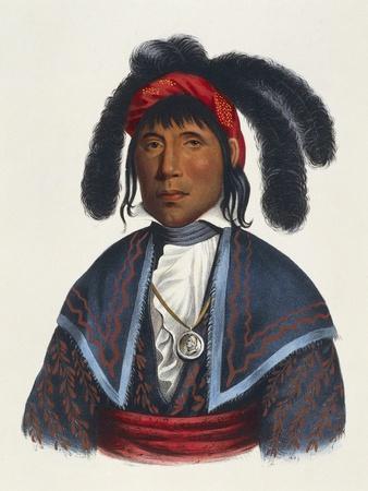 https://imgc.allpostersimages.com/img/posters/seminoles-native-american-chief_u-L-POP2ES0.jpg?p=0