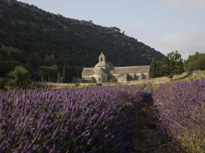 https://imgc.allpostersimages.com/img/posters/senanque-abbey-and-lavender-field-vaucluse-provence-france-europe_u-L-P7IUMO0.jpg?p=0