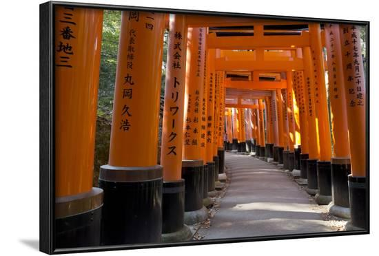 Senbon Torii (1,000 Torii Gates), Fushimi Inari Taisha Shrine, Kyoto, Japan-Stuart Black-Framed Photographic Print
