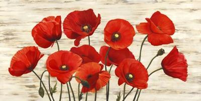 French Poppies by Serena Biffi