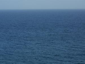 Serene and Placid Blue Ocean and Vast Horizon