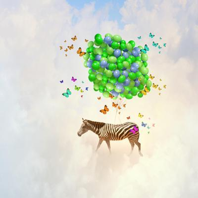 Fantasy Image of Zebra Flying in Sky on Bunch of Colorful Balloons by Sergey Nivens