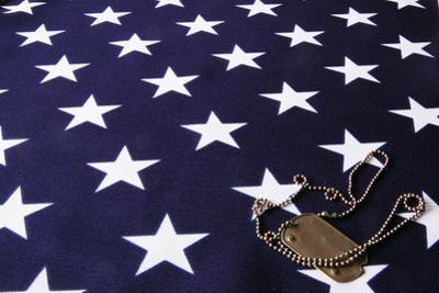 Dog Tag On American Flag by Sergey-USSR