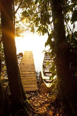 The Edges of Chalalan Lodge Lagoon in Madidi National Park in Bolivia by Sergio Ballivian