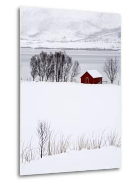 A Lone Red House in a Snowy Winter Landscape by Sergio Pitamitz