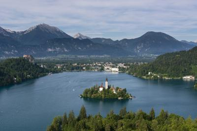 A view from above of Lake Bled and the Assumption of Mary Pilgrimage Church, Bled, Slovenia, Europe by Sergio Pitamitz