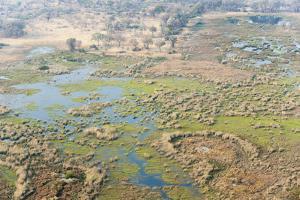 Aerial View of Okavango Delta, Botswana, Africa by Sergio Pitamitz