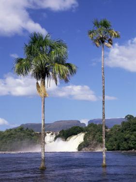 Canaima, Gran Sabana, Venezuela, South America by Sergio Pitamitz