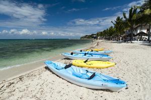 Cozumel Island, Quintana Roo, Mexico, North America by Sergio Pitamitz