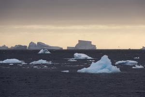 Icebergs, Lemaire Channel, Antarctica, Polar Regions by Sergio Pitamitz