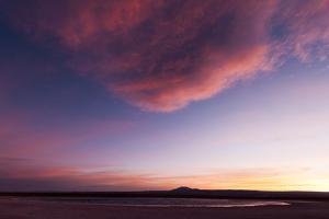 Laguna Cejar, in the Salar De Atacama, with Pink Clouds Overhead at Sunset by Sergio Pitamitz