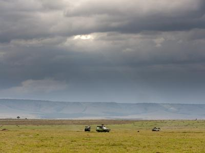 Masai Mara, Kenya, East Africa, Africa by Sergio Pitamitz