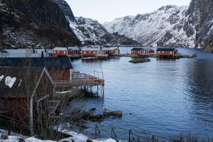 Nusfjord, Lofoten Islands, Arctic, Norway, Scandinavia by Sergio Pitamitz