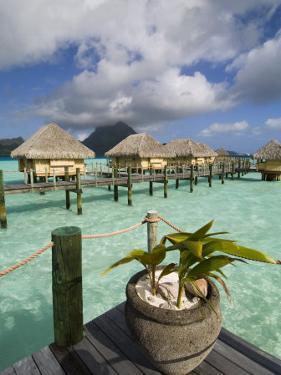 Pearl Beach Resort, Bora-Bora, Leeward Group, Society Islands, French Polynesia by Sergio Pitamitz