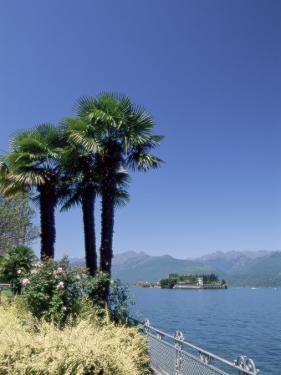 Stresa, with Isola Bella in Background, Lake Maggiore, Piemonte (Piedmont), Italy, Europe by Sergio Pitamitz