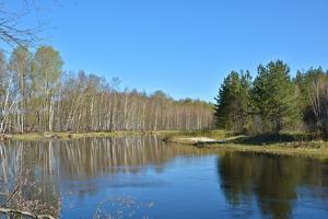 Spring River Landscape. by sergunt