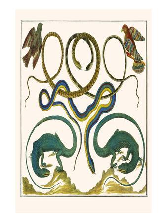 https://imgc.allpostersimages.com/img/posters/serpents-lizards-and-birds_u-L-PGGR9B0.jpg?p=0