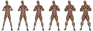 Set of Six Men Showing Progression to Become a Muscular Man