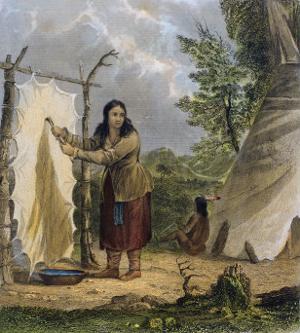 Indian Woman Dressing a Buffalo Skin by Seth Eastman