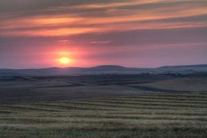 Setting Sun over Harvested Field, Gleichen, Alberta, Canada