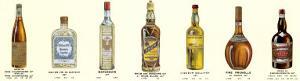 Seven Bottles I