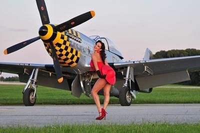 https://imgc.allpostersimages.com/img/posters/sexy-1940-s-style-pin-up-girl-posing-with-a-p-51-mustang_u-L-PN8CXY0.jpg?p=0