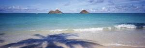 Shadow of a Tree on the Beach, Lanikai Beach, Oahu, Hawaii, USA