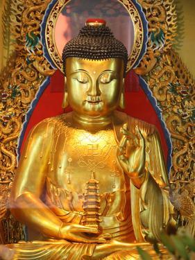 Shakyamuni Buddha Statue in Main Hall, Po Lin Monastery, Tung Chung, Hong Kong, China, Asia