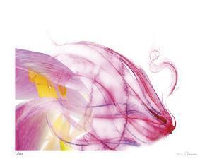 Purple Tulip Abstract No 128 by Shams Rasheed