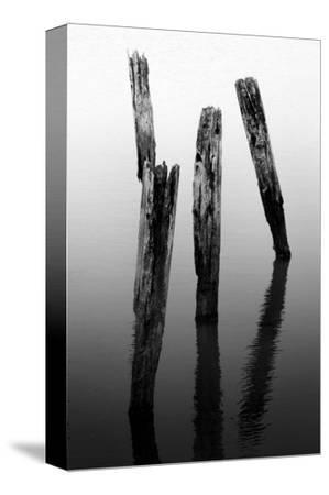 Four Pier Pilings by Shane Settle