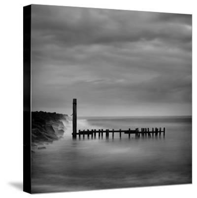 Jetty in Black and White by Shane Settle