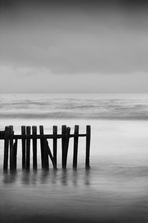 Old Pier I by Shane Settle