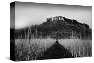 Table Rock Field by Shane Settle
