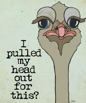Cranky Ostrich by Shanni Welch