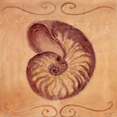 Nautilus by Shari White