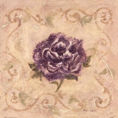 Paeonia De Lavendre by Shari White