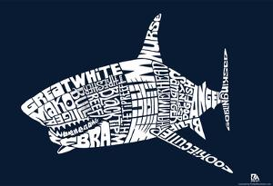 Shark Types Text Poster