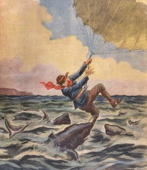 Sharks Eat Parachutist