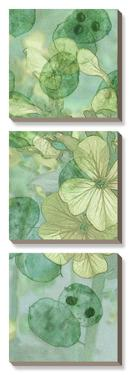 Mint Progeny I by Sharon Chandler
