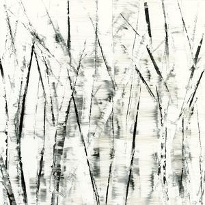 Birches II by Sharon Gordon
