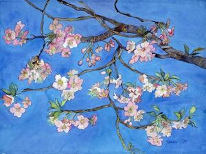 Cherry Blossoms by Sharon Pitts