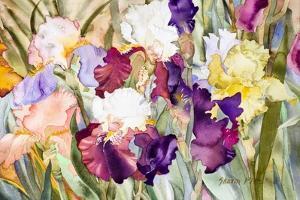 Iris Garden I by Sharon Pitts
