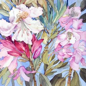 Rhododendron I by Sharon Pitts