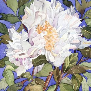 White Peony by Sharon Pitts