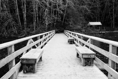 Winter Scene with Wooden Foot Bridge by Sharon Wish