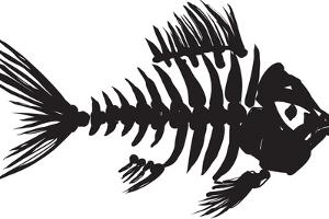 Fish Skeleton by sharpner
