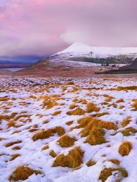 Ireland, Co.Donegal, Derryveagh mountains, Muckish in snow by Shaun Egan